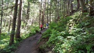 mt roberts trail 1