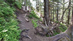 mt roberts trail 4