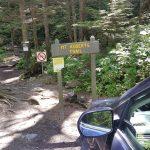 Mt Roberts Trail