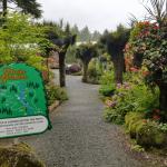 Glacier Gardens Rainforest Adventure