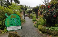 Glacier Gardens Entry