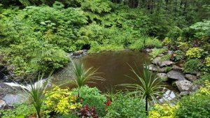 Glacier Gardens Pool